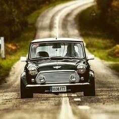 How do you transport your Mini around ? Like this hahah Love it Share it Like it Thanks. Mini Cooper Classic, Classic Mini, Classic Cars, Retro Cars, Vintage Cars, My Dream Car, Dream Cars, Mini Morris, Jaguar