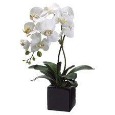 All Artificial Flowers   Wayfair