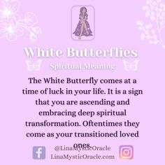 Animal Spirit Guides, Spirit Animal, Butterfly Meaning, Revenge Spells, Color Symbolism, Child Of The Universe, Curious Facts, Spiritual Transformation, Spiritual Meaning