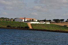Portugal's Best Wine Hotels - via Nelson Carvalheiro 11.06.2015 | Travel through Portugal through wine! Ahead of you is a day of Portuguese Wine discovery, always accompanied by quaint and candid Portuguese traditional cuisine. Photo: Herdade da Malhadinha Nova, Beja - Alentejo