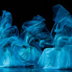 Artists of The Australian Ballet in 'Giselle' - Photography Jeff Busby Ballet Poses, Ballet Dancers, Ballet Art, Ballet Images, Australian Ballet, Ghost Costumes, Danse Macabre, Ballet Photography, Photo Wall Collage