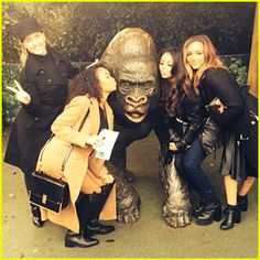 LITTLE MIX AT THE ZOO - Google Search