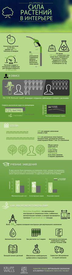 Vertical gardening. Инфографика - вертикальное озеленение, польза растений в интерьере