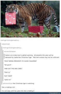 Funny tumblr post Cute Funny Animals, Funny Cute, Hilarious, Dc Memes, Funny Memes, Jokes, Lol, Hamsters, Stupid Funny