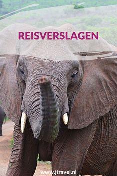 Hier vind je de links naar de verschillende uitgebreide reisverlagen die ik heb gemaakt. Lees en klik je mee? #reisverslagen #thailand #zuidafrika #namibie #vietnam #borkum #nederland #jtravel #jtravelblog