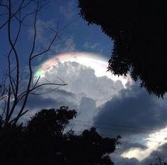 Una mujer mira hacia el cielo, lo que ella ve hace que se ponga a FILMAR CON SU…