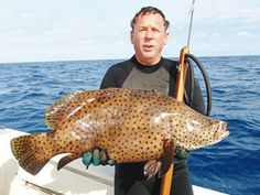 Mystery fish invades Florida Keys waters from the Pacific