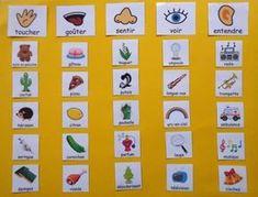 Science Sorting Tasks Are Great - Tout sur le jardin d'enfants Five Senses Preschool, My Five Senses, Body Preschool, Senses Activities, Preschool Activities, French Teaching Resources, Teaching French, Teaching Kids, Kids Learning