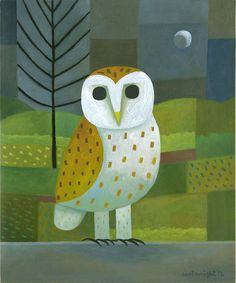 Barn Owl by Reg Cartwright