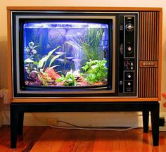 It is so fun to watch the fish in the aquarium in the old TV cabinet.