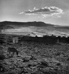 Sardinia, 1950 Photo by Werner Bischof/