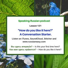 "Speaking Russian. Lesson 132. Learn how to ask in Russian ""Is this your first time here? How do you like it here?"" and how to say in Russian ""noisy"", ""crowded"", ""honestly speaking"" and more. Check the words and phrases by following the link on www.russianeasy.com (132. How do you like it here?) #Russian #russian #russianlanguage #russianwords #learnrussian #learningrussian #русскийязык #rus #rusce #русский #speakingrussianpodcast #elviraivanova #howtospeakrussian"