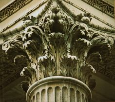 acanthus leaves images - Google Search