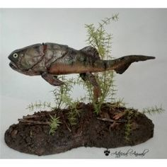Coccosteus sculpture handmade. 40 cm long. Polyurethane Resin, Vertebrates, Sculpting, Fish, Animals, Handmade, Extinct Animals, Museums, Sculpture