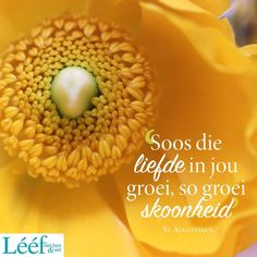 Afrikaans Quotes, Food Wallpaper, Woman Quotes, Inspirational Quotes, Van, Decoupage, Gift Ideas, Yellow, Life Coach Quotes