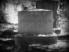 There are several Frankenstein graves in Jewish Graceland Cemetery in Chicago.