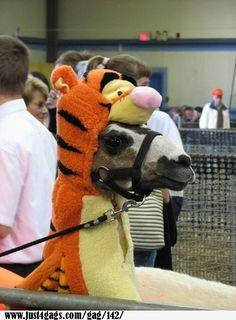 These people are giving children nightmares! Tigger is eating a lama!!!