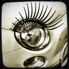 Do you wish your lashes were this long ladies ;-)