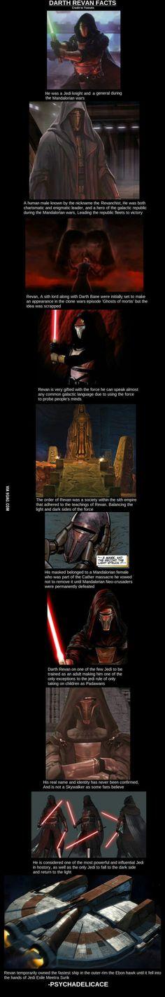 Darth Revan: warrior, conquerer, Imperial marauder, Republic savior, hero, villain, Sith Lord, Jedi Master.