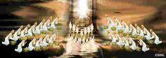 wisdom of the twenty four elders | In every mention of these twenty-four