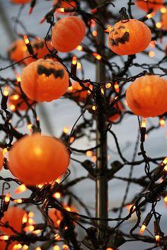 pumpkins and lights