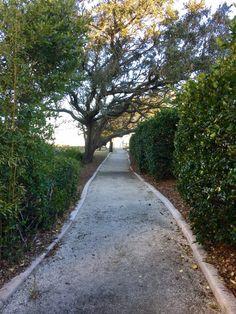 Take The Narrow Road