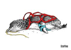Plastik richtet in unserer Welt viel Leid an. Nicht nur die Umwelt sondern auch zahlreiche Tiere leiden enorm an der Plastikflut.  87 Plastikfreie Tipps findest du, wenn du auf dieses Foto jetzt klickst.  #plastikfrei #umweltschutz #zerowaste #tierschutz #müllfrei #nachhaltigkeit