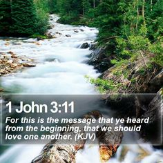 1 John 3:11 For this is the message that ye heard from the beginning, that we should love one another. (KJV)  #Scriptures #Redemption #Wisdom #OurFather #VerseOfTheDay http://www.bible-sms.com/