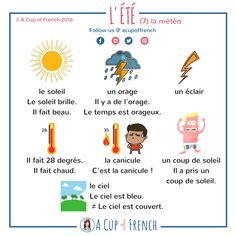 Learn French with A Cup of French! Easy and fun lessons with infographics and videos. You can enjoy your cup of French wherever you want and at your own pace. Learn French Beginner, Learn To Speak French, French Lessons For Beginners, French Flashcards, French Worksheets, French Expressions, French Language Lessons, French Language Learning, Ways Of Learning