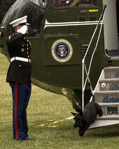 Barney Bush Trots Off Marine One and gets a greeting fit for a scottie :-)