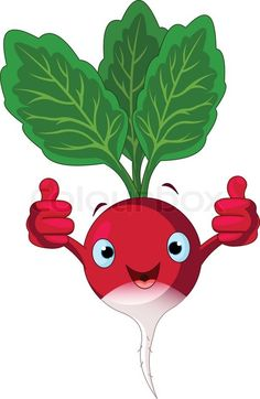 Stock vector of 'Illustration of a radish Character giving thumbs up' Vegetable Cartoon, Cartoon Vegetables, Funny Emoji Faces, Funny Emoticons, Image Fruit, Funny Fruit, School Painting, Kids Corner, Fruit And Veg
