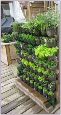 35 Beautiful DIY Vertical Garden in the Backyard – Jardin Vertical Fachada - New ideas Vertical Succulent Gardens, Vertical Garden Design, Vegetable Garden Design, Succulents Garden, Vertical Vegetable Gardens, Vegetable Gardening, Vertical Planting, Vertical Pallet Garden, Pallet Planters