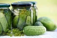 The goal of this Fitness Blog is to help you reclaim your fitness, health, and feel a good factor. X Fitness want to help people decide on the right fitness products for their needs and we offer recipes to fuel the body and mind with good stuff. Losing weight and toning up is not easy but you have to stick at it!!! Pickle Juice Recipe, Quick Pickle Recipe, Pickle Soup, Pickles Recipe, Old Fashioned Dill Pickle Recipe, Making Dill Pickles, Homemade Pickles, Sweet Pickles, Refrigerator Pickles