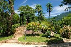 Resultado de imagem para Jardim Botânico do Rio de Janeiro