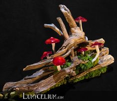 LUMYCELIUM - let you slip into an imaginary atmosphere. Fantasy lamps with lighting mushrooms. Welcome to the fantasy world of Lumycelium! Giant Mushroom, Mushroom Art, Mushroom Crafts, Mushroom Lights, Fairy Pictures, Weird Gifts, Fairy Crafts, Flower Lights, Handmade Home Decor