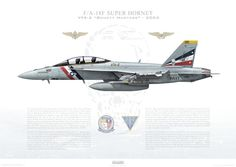 F/A-18F Super Hornet VFA-2 Bounty Hunters, NE100 / 165916 / 2004 - A2 - Museum Quality Custom Aviation Prints