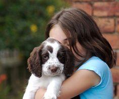 Las mejores y peores formas de darle cariño a tu perro