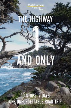 Hug the coast and embrace your free-wheeling spirit on this iconic drive of California& coast. Vacation Destinations, Dream Vacations, Vacation Spots, California Vacation, California Coast, Travel Info, Travel Usa, Travel Articles, Golden State