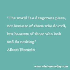 Quote from Albert Einstein
