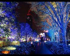 Christmas in the streets of Nagoya, Japan