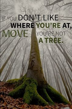 You may be just as strong as a tree, but you're also far more flexible than one too.