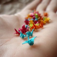 I make paper cranes all the time but I think it'd be cool to make a whole bunch and put them in a container like these. Aren't they cute?!