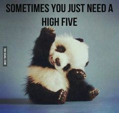 Sometimes all you need is a high five