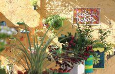 Jardim de latas, e como você pode ter uma casa linda com pouco dinheiro - dcoracao.com - blog de decoração e tutorial diy