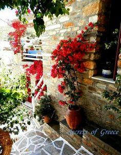Paros Lefkes Greece