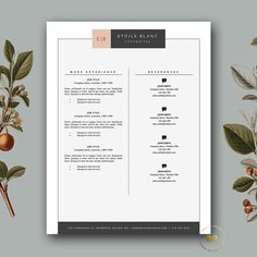 Modern Resume Template & Cover Letter von BotanicaPaperieShop