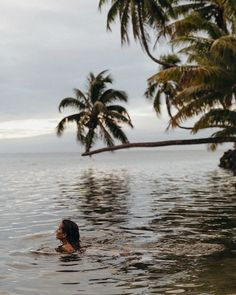 """Sara Escudero en Instagram: """"My favorite way to wait for the sunset, swimming on the beach 🧜♀️ ⠀ ⠀ ⠀ @turquoiselane"""" Hawaii, Swimming, Mountains, Sunset, Beach, Water, Travel, Outdoor, Usa"""