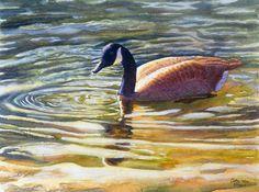 Canada Goose art aquarelle impression d'une par CathyHillegas