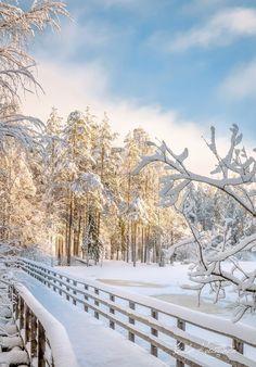 City Landscape, Winter Landscape, Winter Magic, Winter Snow, Winter Photography, Landscape Photography, Photo Trop Belle, Winter Scenery, Winter Photos