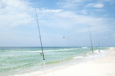 A little surf fishing can be relaxing and rewarding! #GulfShores #Alabama